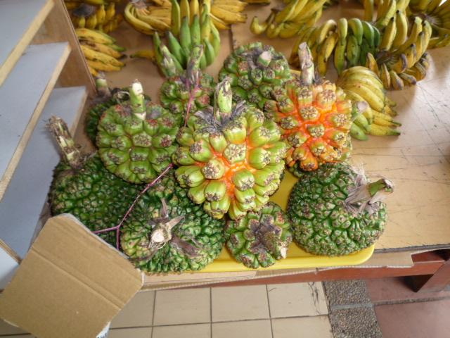 墾丁で見つけた果物